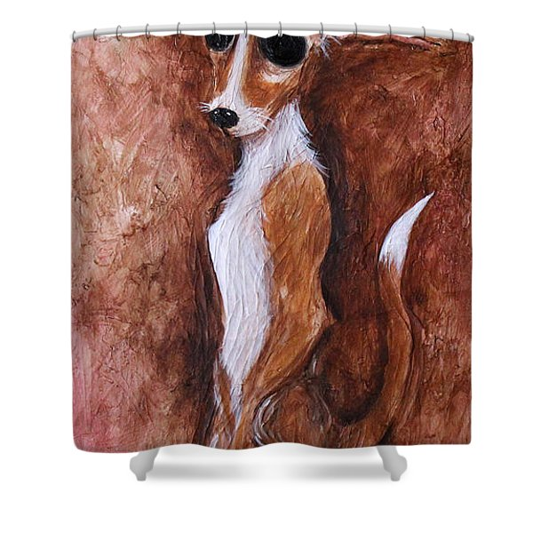 Loretta Chihuahua Big Eyes  Shower Curtain