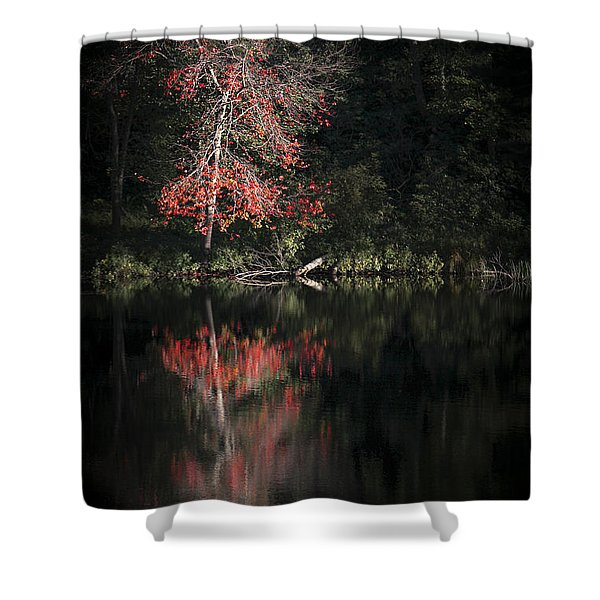Lost In The Autumn Of Eternity Shower Curtain