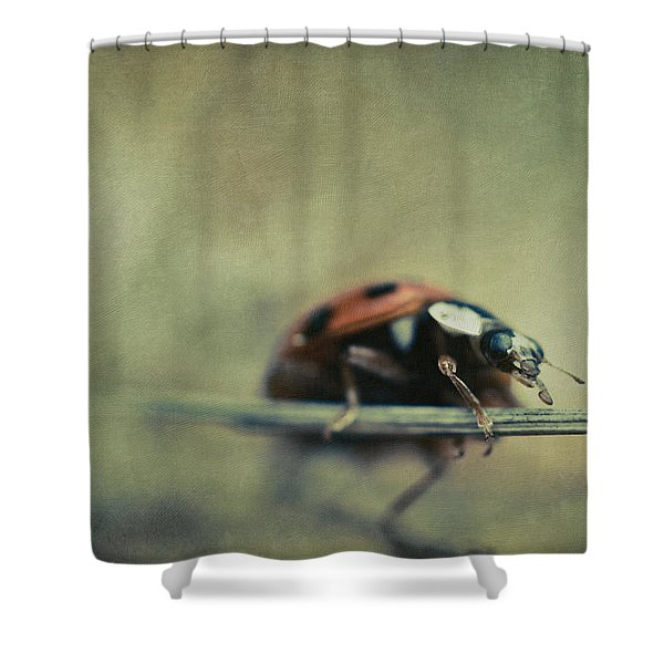 Lost Lady Shower Curtain
