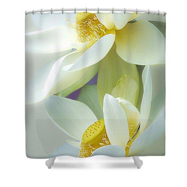 Lotuses In Bloom Shower Curtain