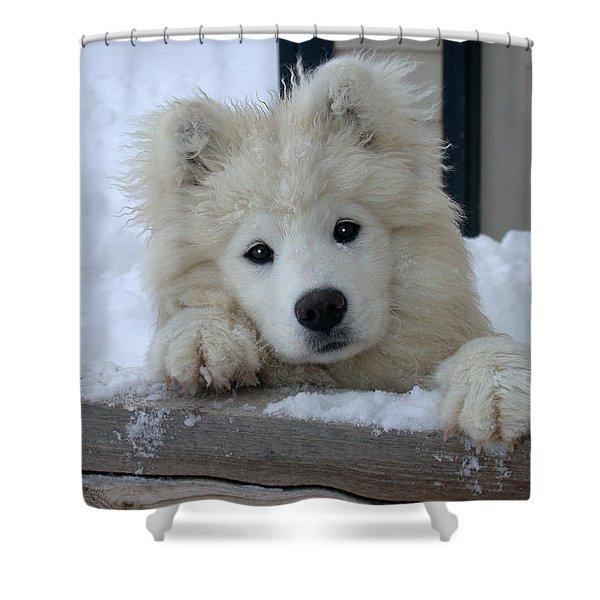 Loving The Snow Shower Curtain