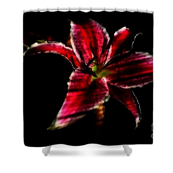 Luminet Darkness Shower Curtain