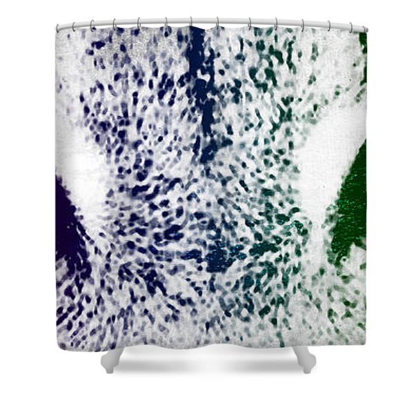 Lynx Eyes Shower Curtain