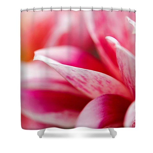 Macro Image Of A Pink Flower Shower Curtain