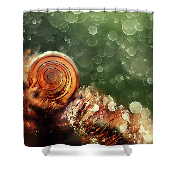 Shower Curtain featuring the photograph Magic Forest by Jaroslaw Blaminsky