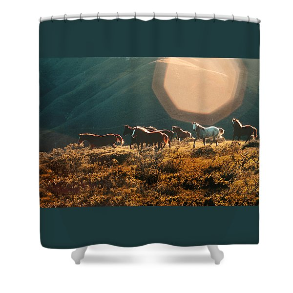 Magical Herd Shower Curtain