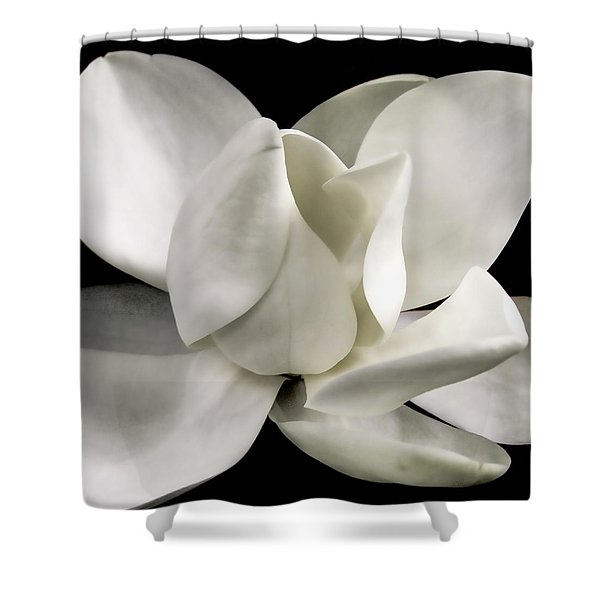 Magnolia Bloom Shower Curtain