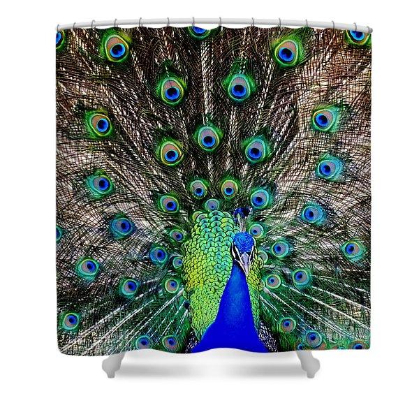 Majestic Blue Shower Curtain