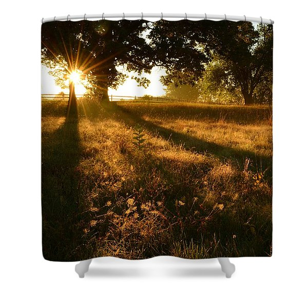 Majestic Oaks Sunrise Shower Curtain