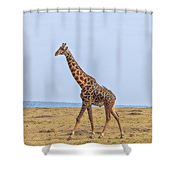 Shower Curtain featuring the photograph Male Giraffe Making An Entrance by Perla Copernik