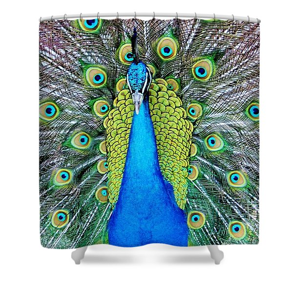 Male Peacock Shower Curtain
