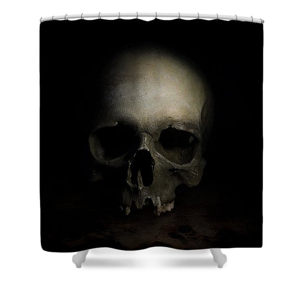 Shower Curtain featuring the photograph Male Skull by Jaroslaw Blaminsky