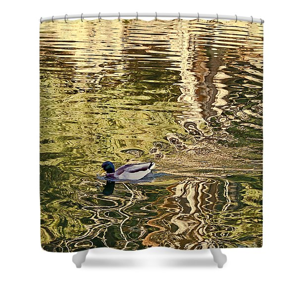 Mallard Painting Shower Curtain