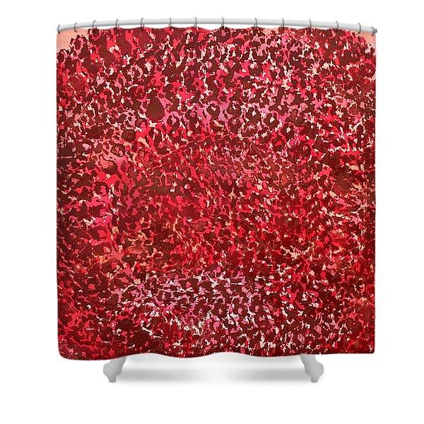 Mandala Sun Original Painting Shower Curtain by Sol Luckman