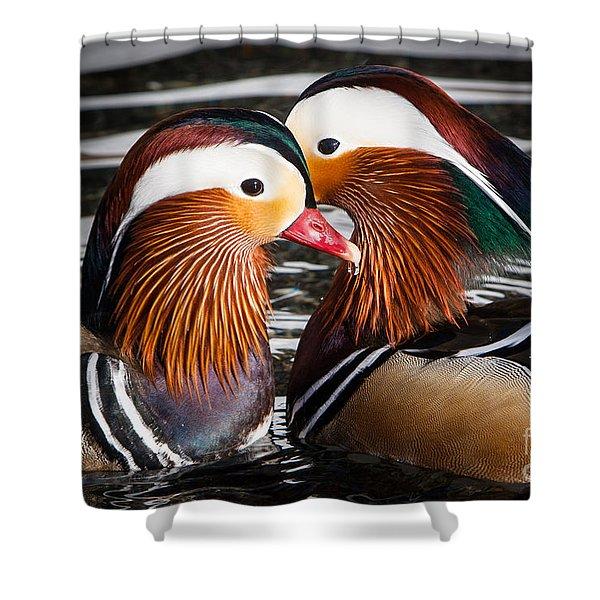 Shower Curtain featuring the photograph Mandarin Lovers by John Wadleigh