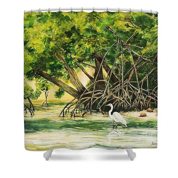 Mangrove Morning Shower Curtain