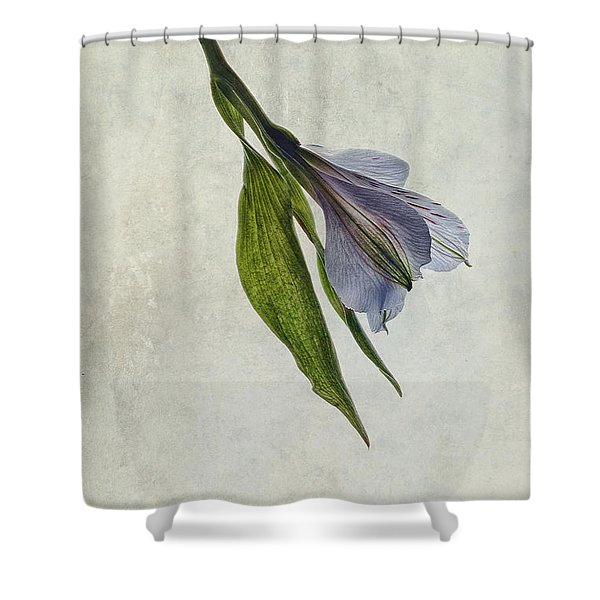 Mantis Lily Shower Curtain