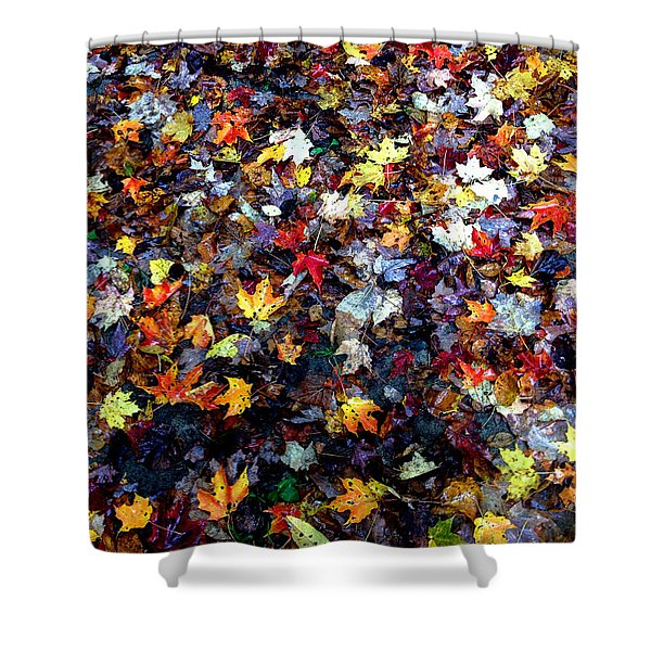Maple Chaos Shower Curtain