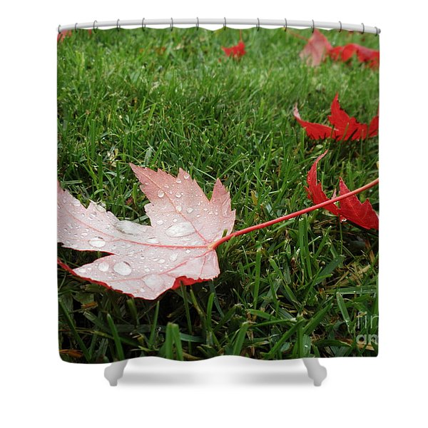 Maple Leaf In Canada Shower Curtain