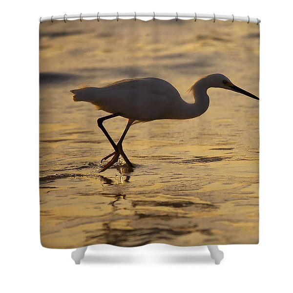 March Of The Egret Shower Curtain