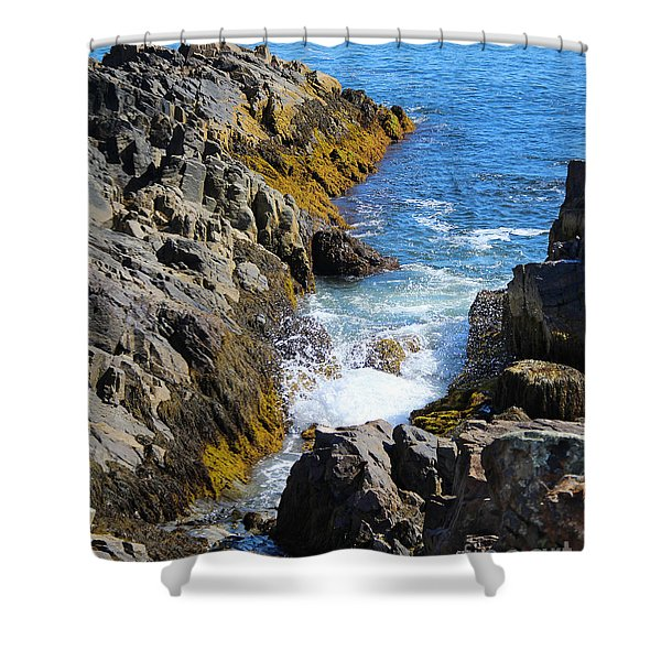 Shower Curtain featuring the photograph Marginal Way Crevice by Jemmy Archer