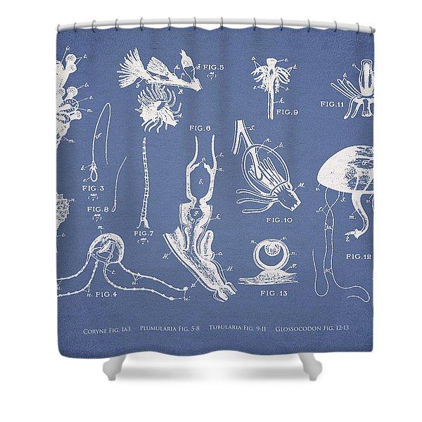 Marine Organisms Hydromedusae Shower Curtain