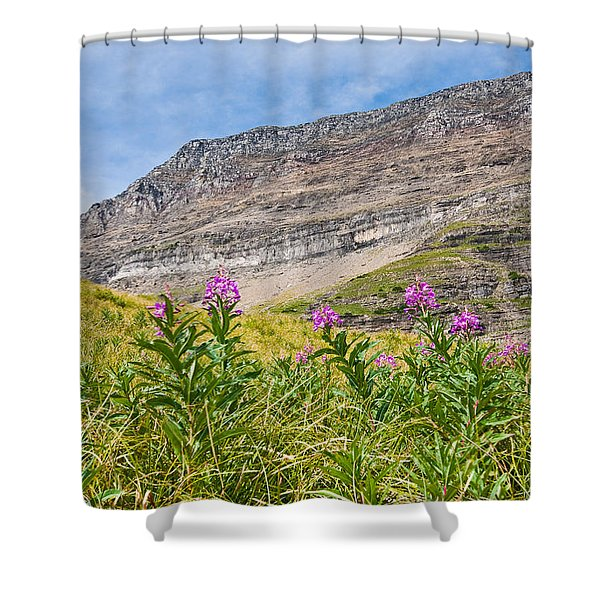 Meadow Of Fireweed Below The Continental Divide Shower Curtain