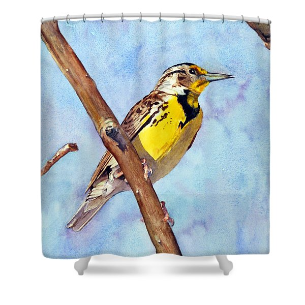 Meadowlark Sunrise Shower Curtain