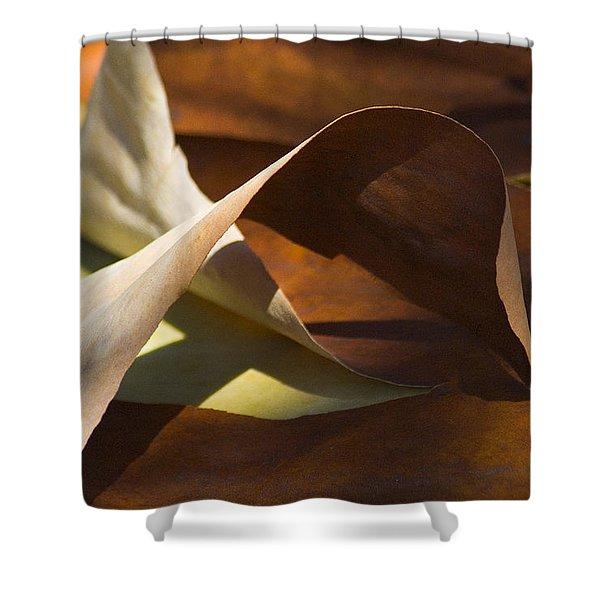 Mebius Strip Shower Curtain