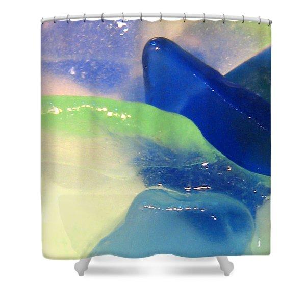 Mermaid's Treasure Shower Curtain