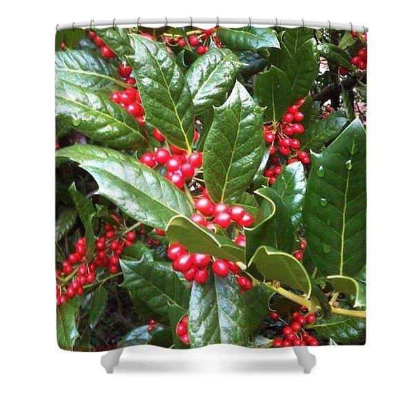 Merry Berries Shower Curtain
