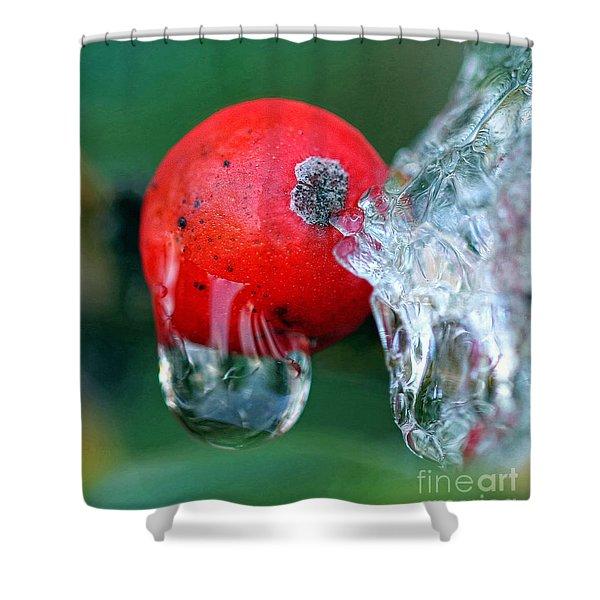 Midwinter Meltdown Shower Curtain