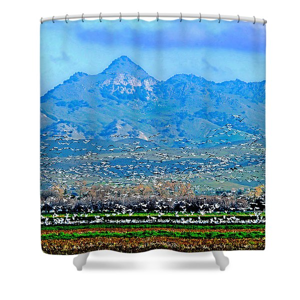 Migrating Birds Over Sutter Wilflife Refuge Shower Curtain