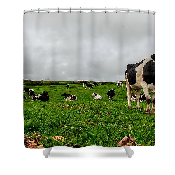 Milk Nature Nose Shower Curtain
