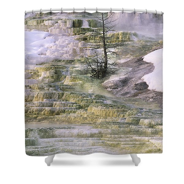 Minerva Springs Terraces Yellowstone National Park Shower Curtain