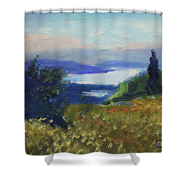 Miniature From Kavran Shower Curtain