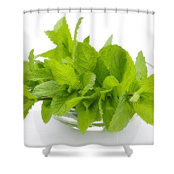Mint Sprigs In Bowl Shower Curtain