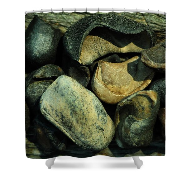 Miocene Fossil Whale Bones Shower Curtain