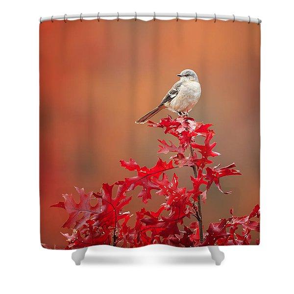 Mockingbird Autumn Shower Curtain