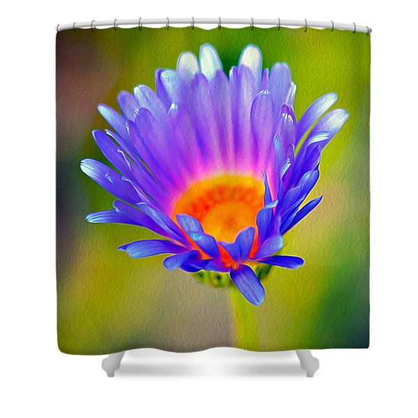 Mojave Aster Shower Curtain