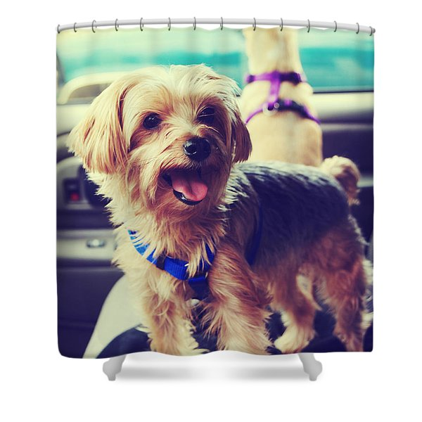Molly's Road Trip Shower Curtain