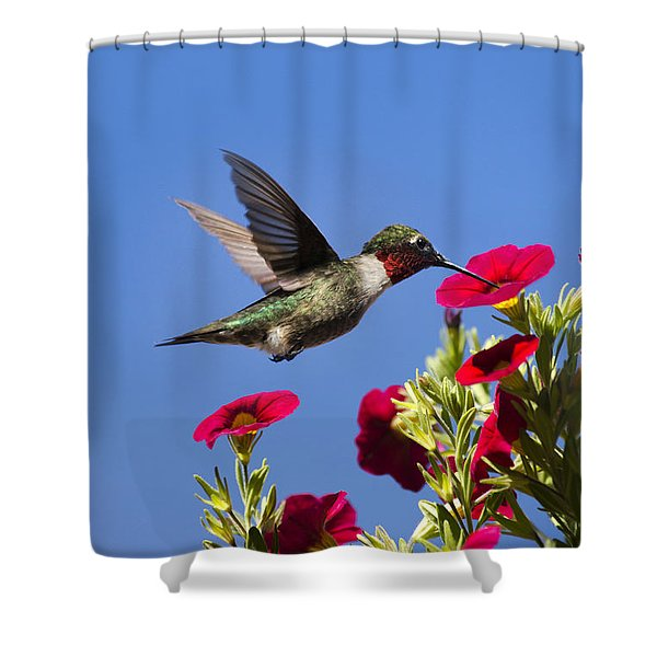Moments Of Joy Shower Curtain