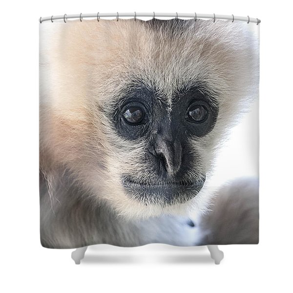 Monkey Face Shower Curtain