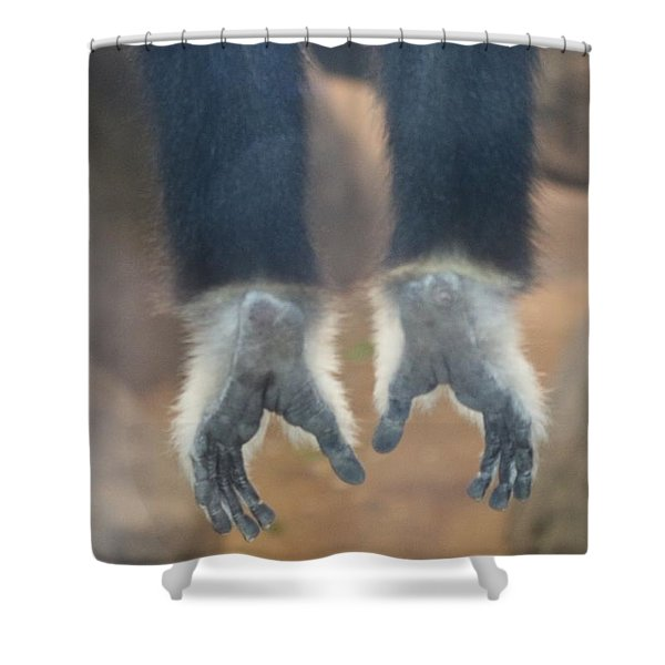 Monkeying Around  Shower Curtain
