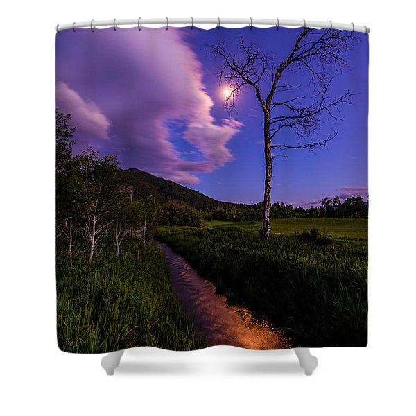 Moonlight Meadow Shower Curtain