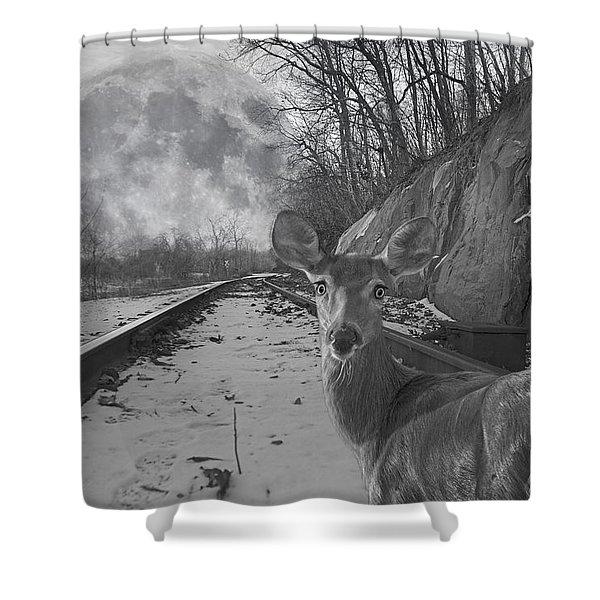 Moonshine Deer Tracks Shower Curtain