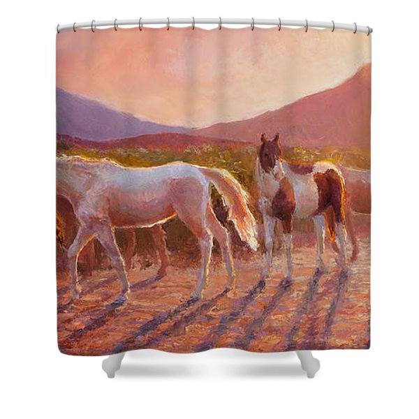 More Than Light Arizona Sunset And Wild Horses Shower Curtain