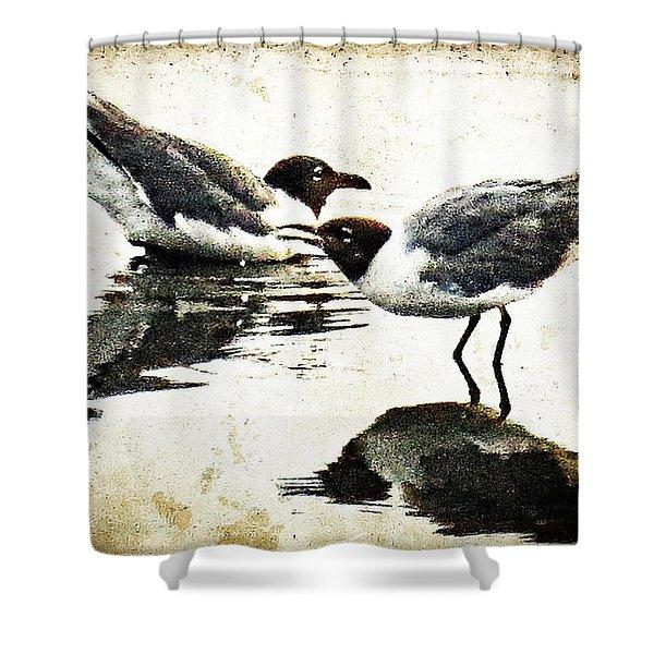 Morning Gulls - Seagull Art By Sharon Cummings Shower Curtain