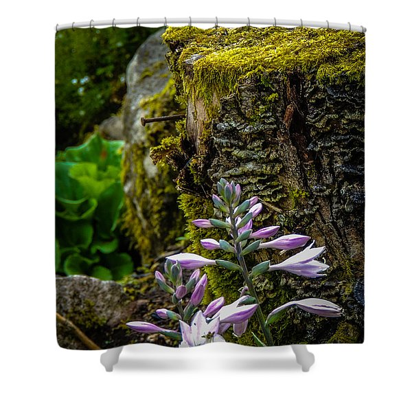 Moss And Flowers In Markree Castle Gardens Shower Curtain
