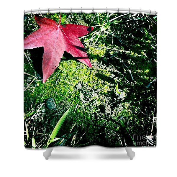 Moss Shower Curtain